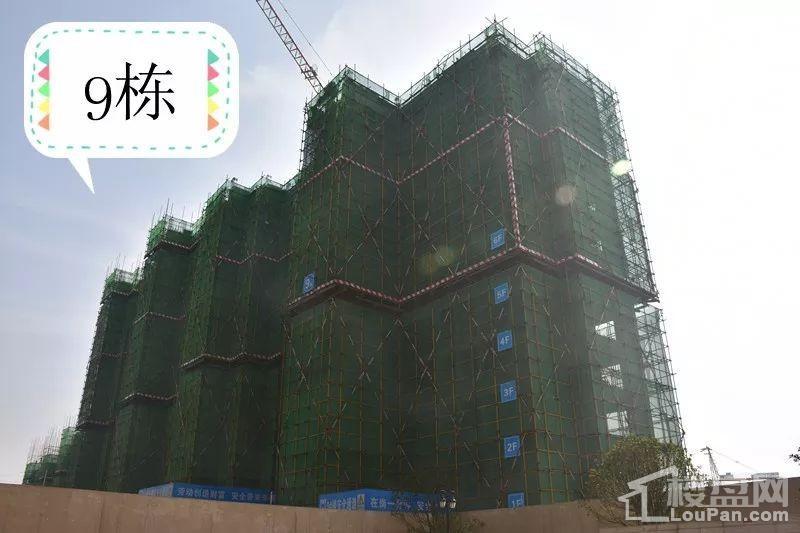 金科城9#栋12月工程进度