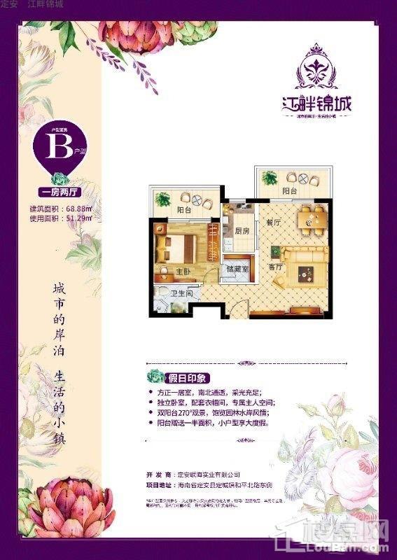 定安•江畔锦城B户型图
