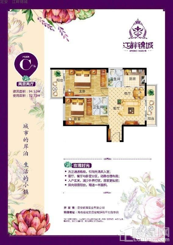 定安•江畔锦城C户型图