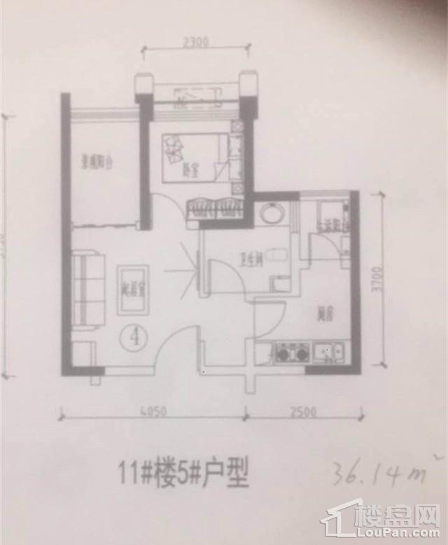 11#楼5#户型