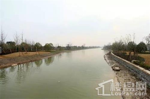 >宝岛河河道整治工程