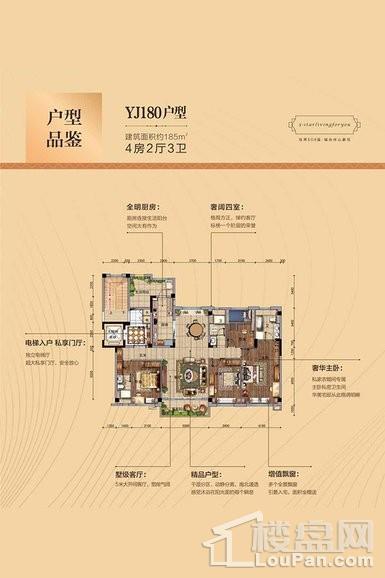 吉首碧桂园—YJ180户型