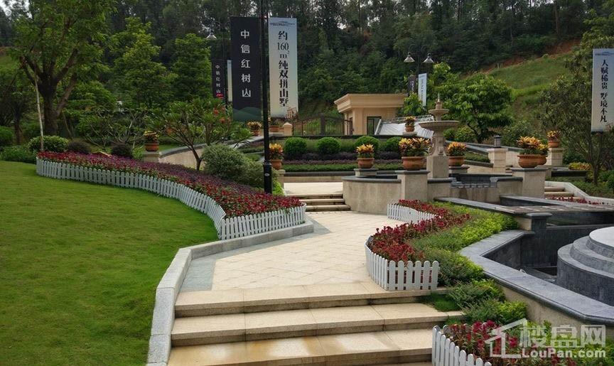中信红树山实景图