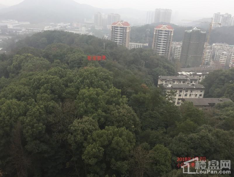 云溪谷实景图