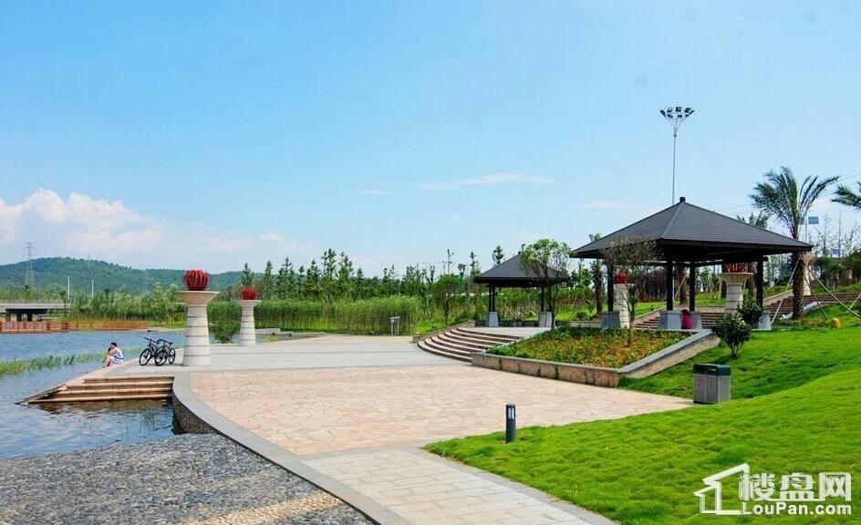 西河沙滩公园