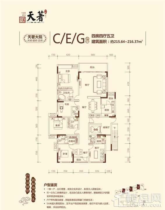 CEG户型