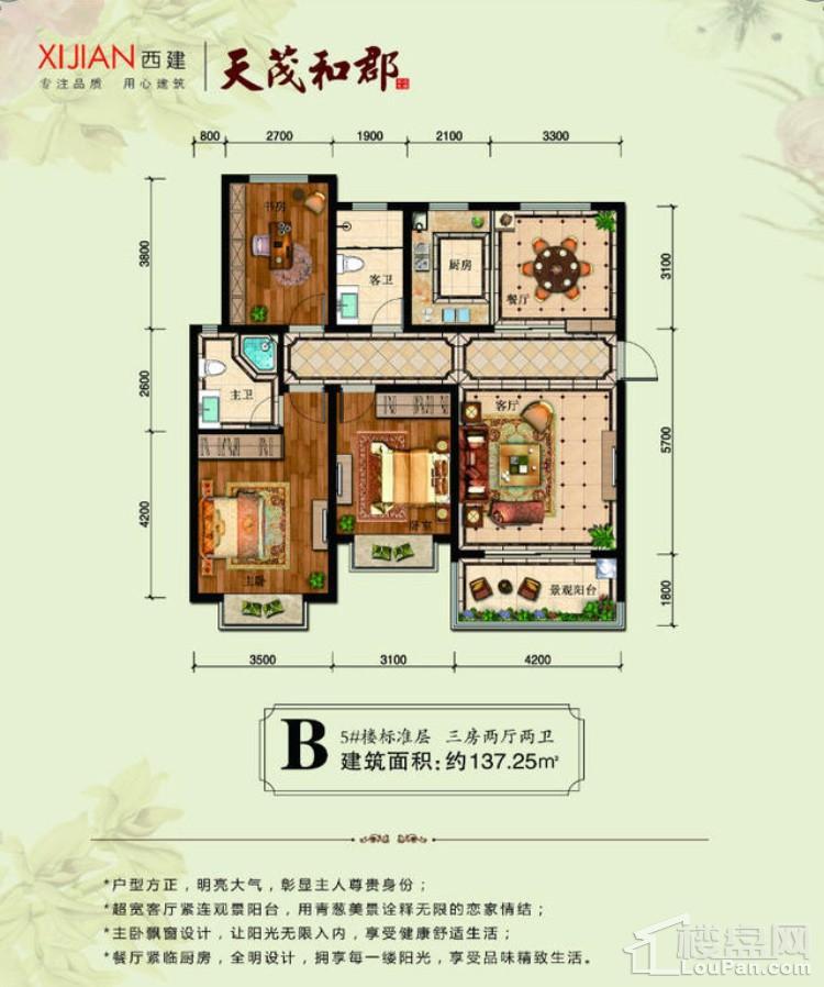 5#B户型