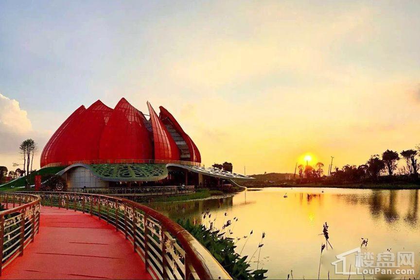广州万达城实景图
