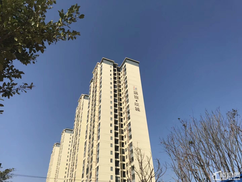 瑞锦欣城实景图