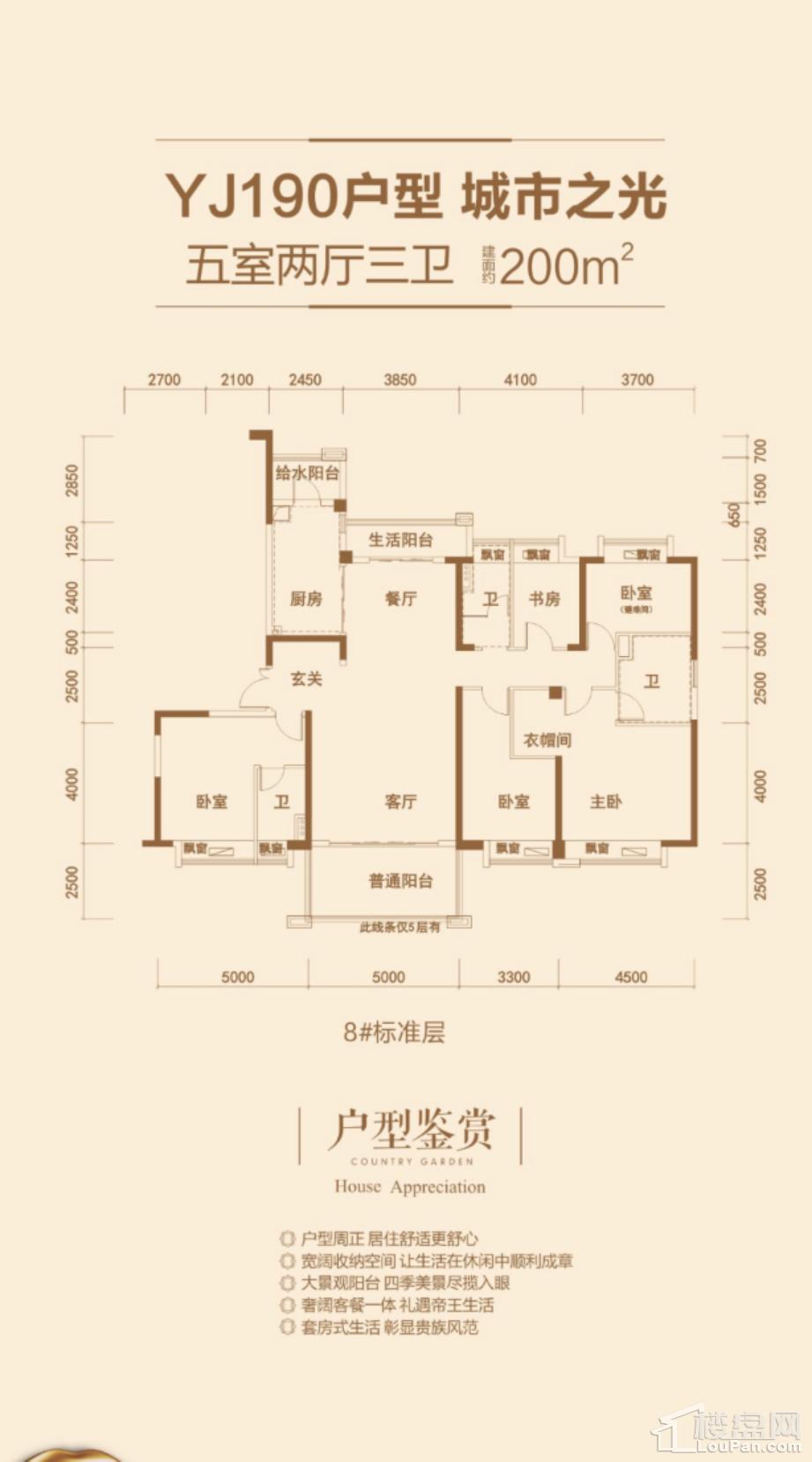 益阳碧桂园三期锦岸户型图