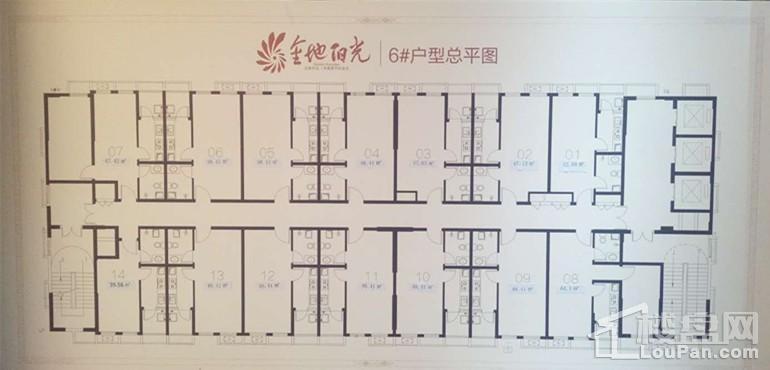 6#楼户型总平图