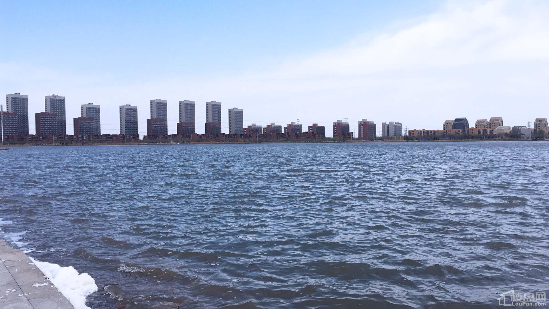 金辉优步湖畔配套