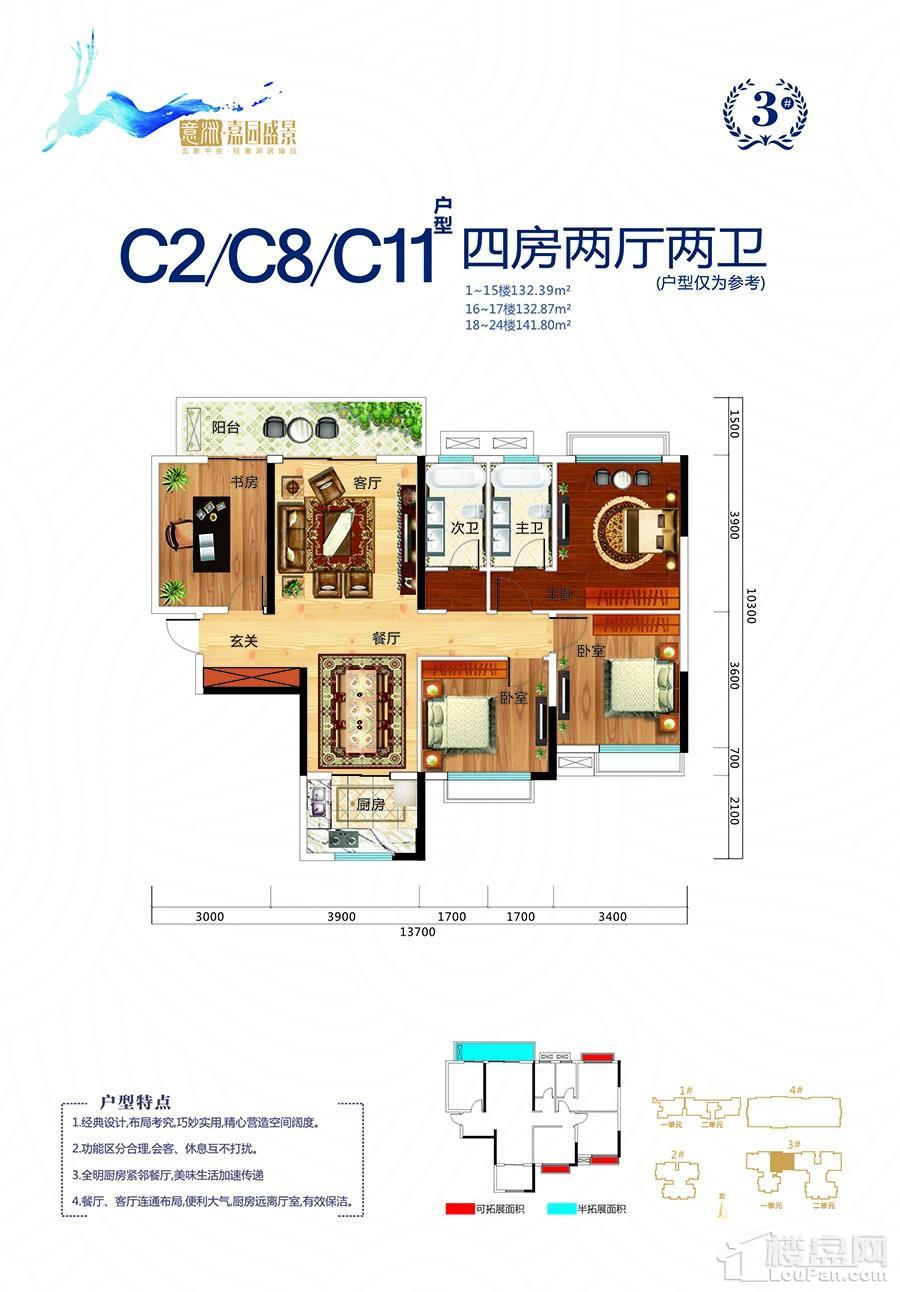 意洲嘉园盛景3#楼C2/C8/C11户型