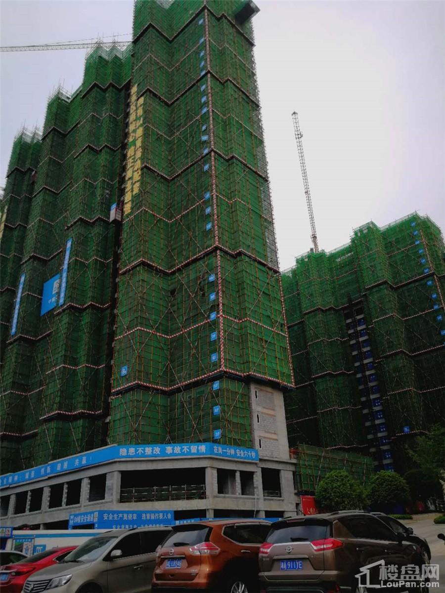 金科城三期4月工程进度