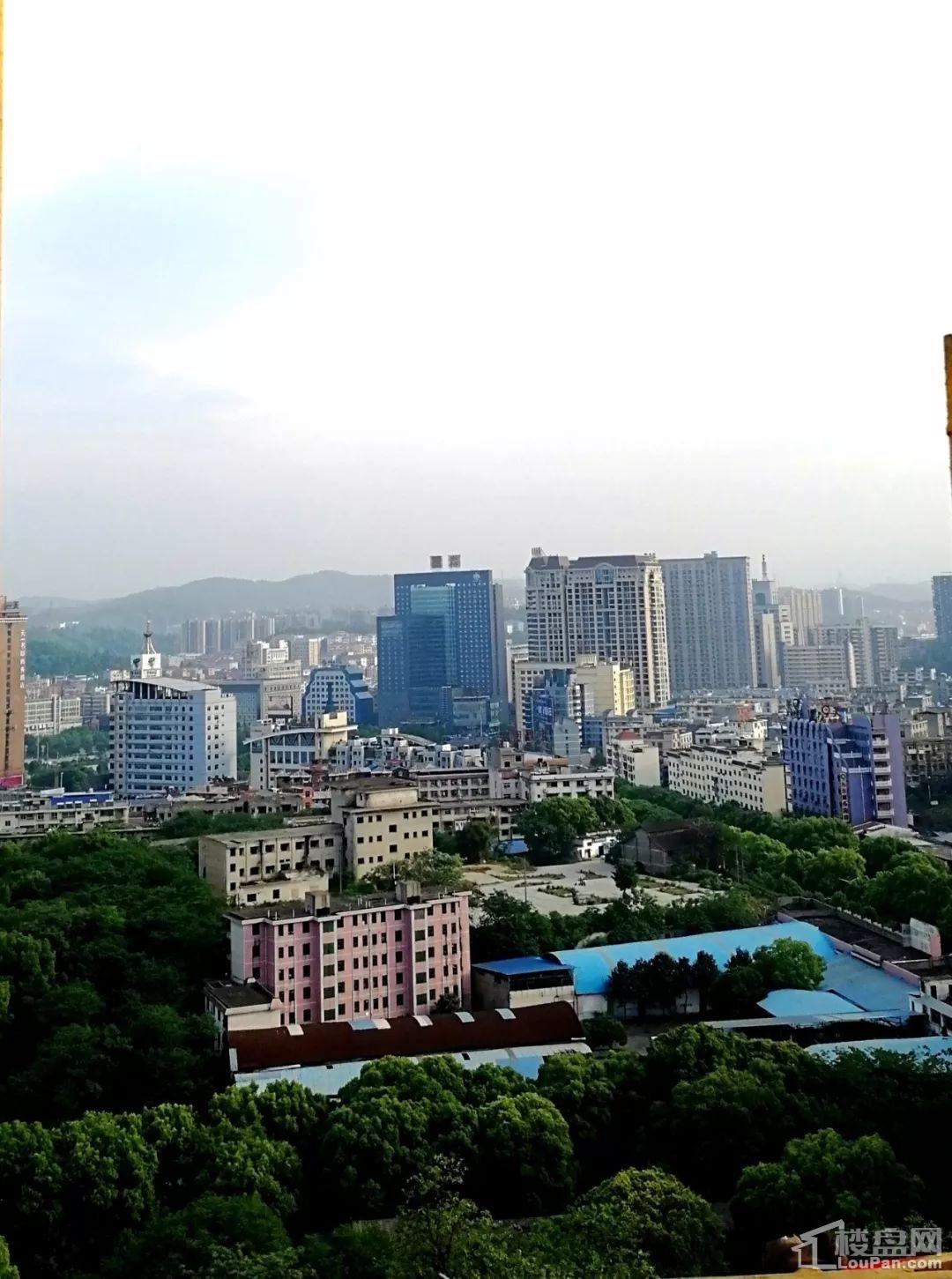 盈丰国际1#栋顶层俯瞰视角图