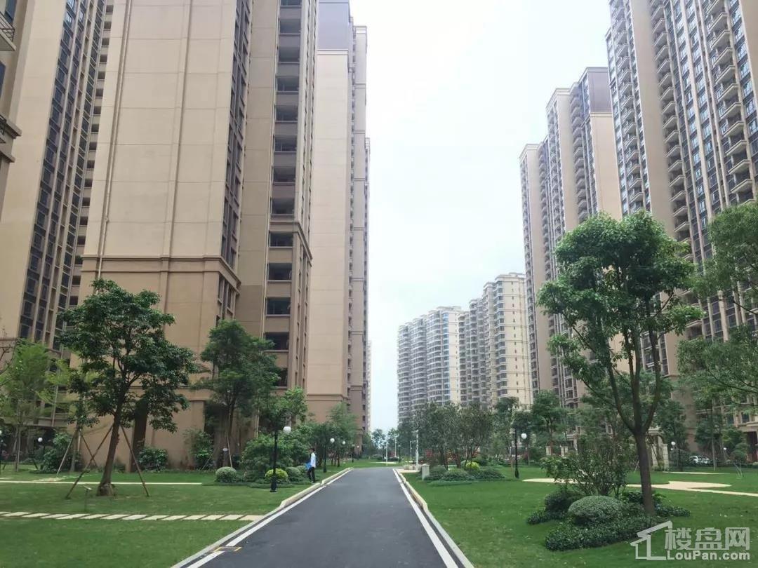 碧桂园·太阳城天汇