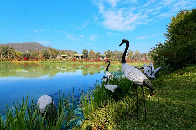 碧桂园·湖光山色实景图