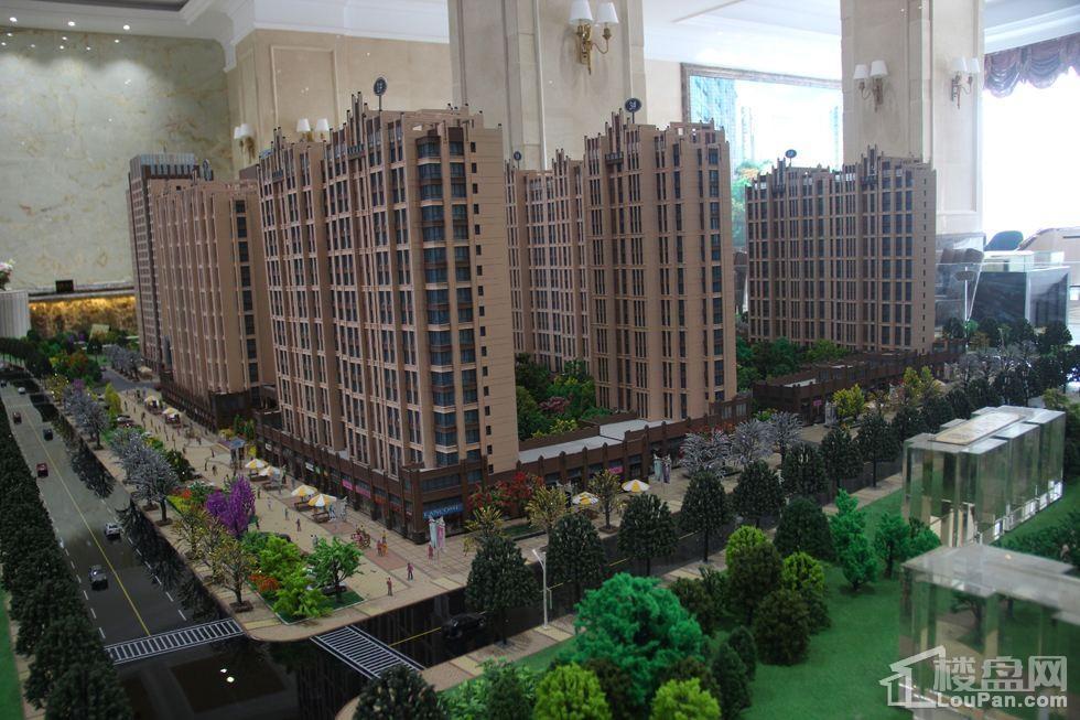 财富九龙城实景图