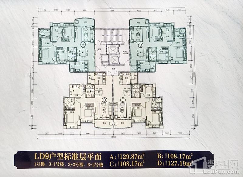 恒大翡翠龙庭LD9户型平面图