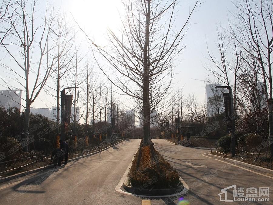 绿地IFC中央公馆实景图