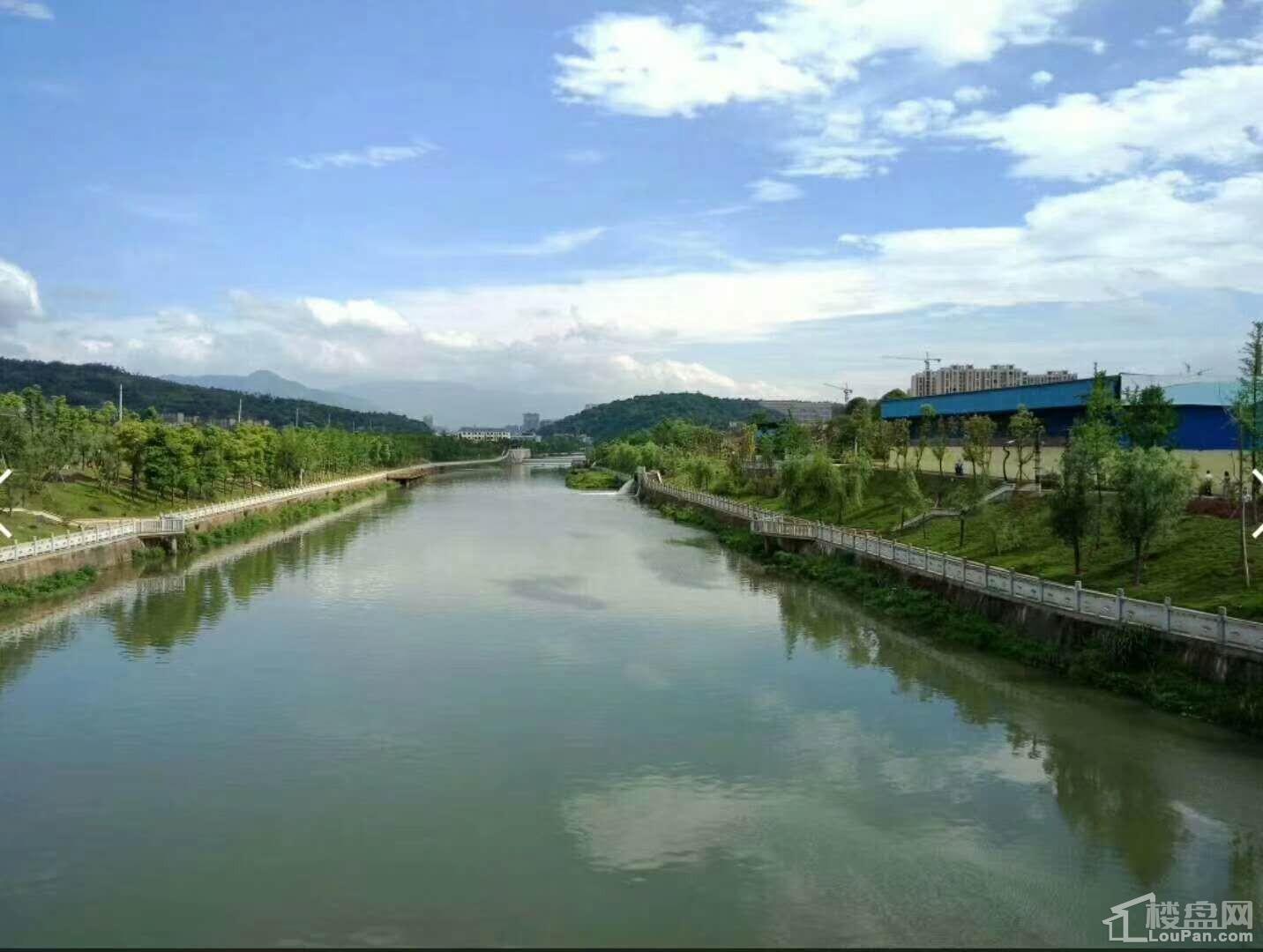 郴江河实景