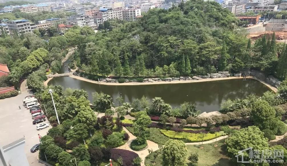 爱塞丽雅·城市广场实景图