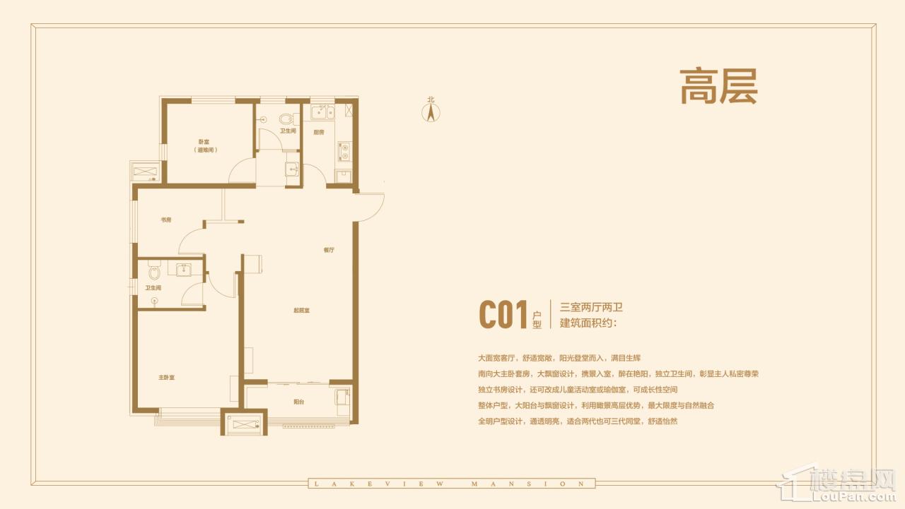 C01户型