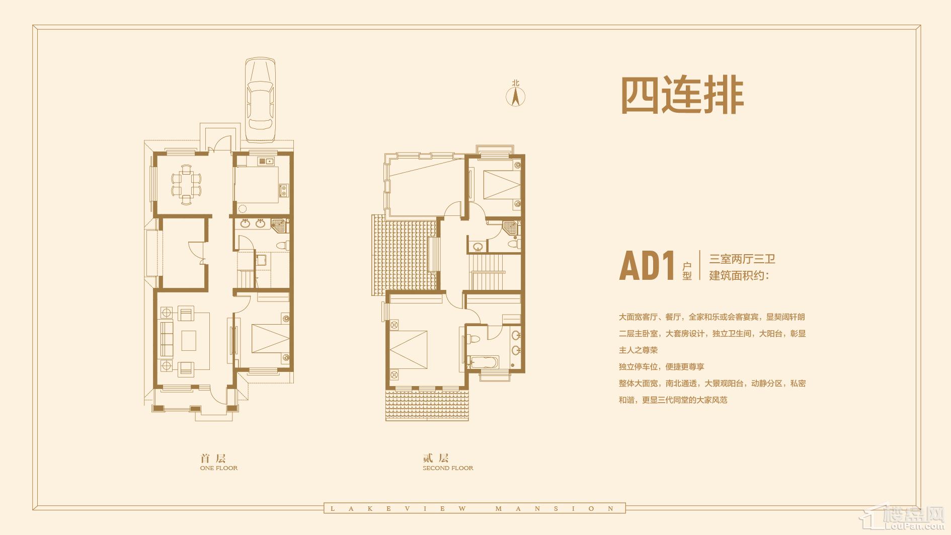 A-D1户型