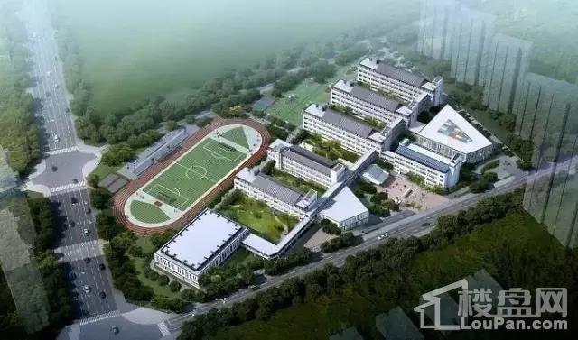 九龙湖小学