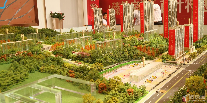 湘西碧桂园·中央公园实景图