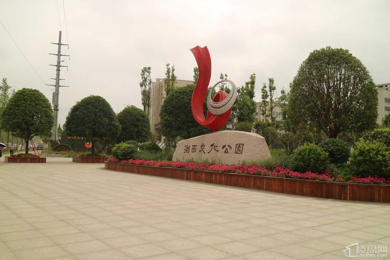 湘西碧桂园·中央公园配套图