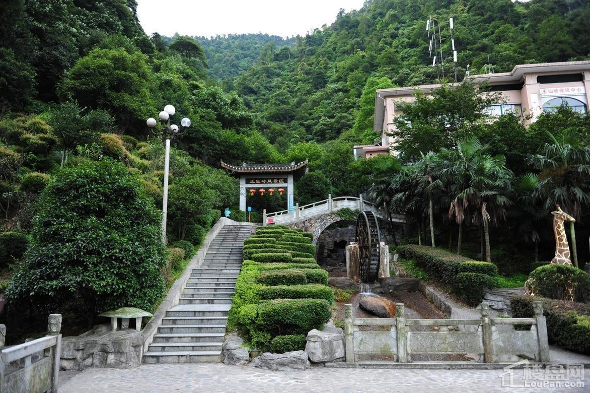 王仙岭生态公园