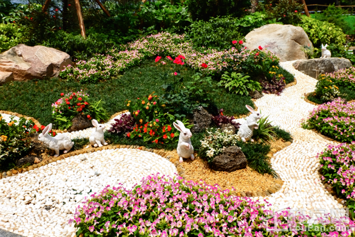碧桂园·星钻实景图