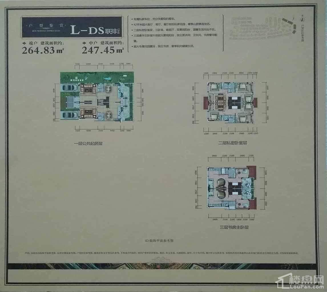 L-DS户型