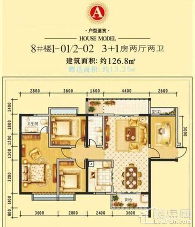 8#楼1-01/2-02户型