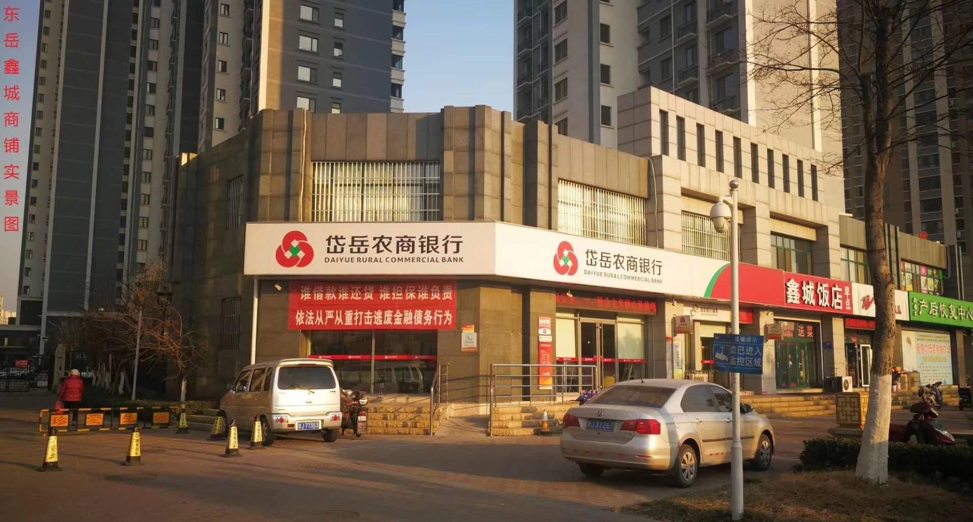 东岳鑫城实景图