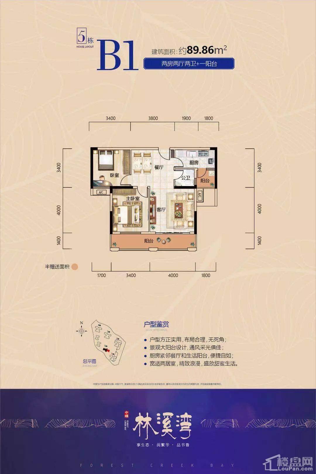 中耀·林溪湾5栋B1户型