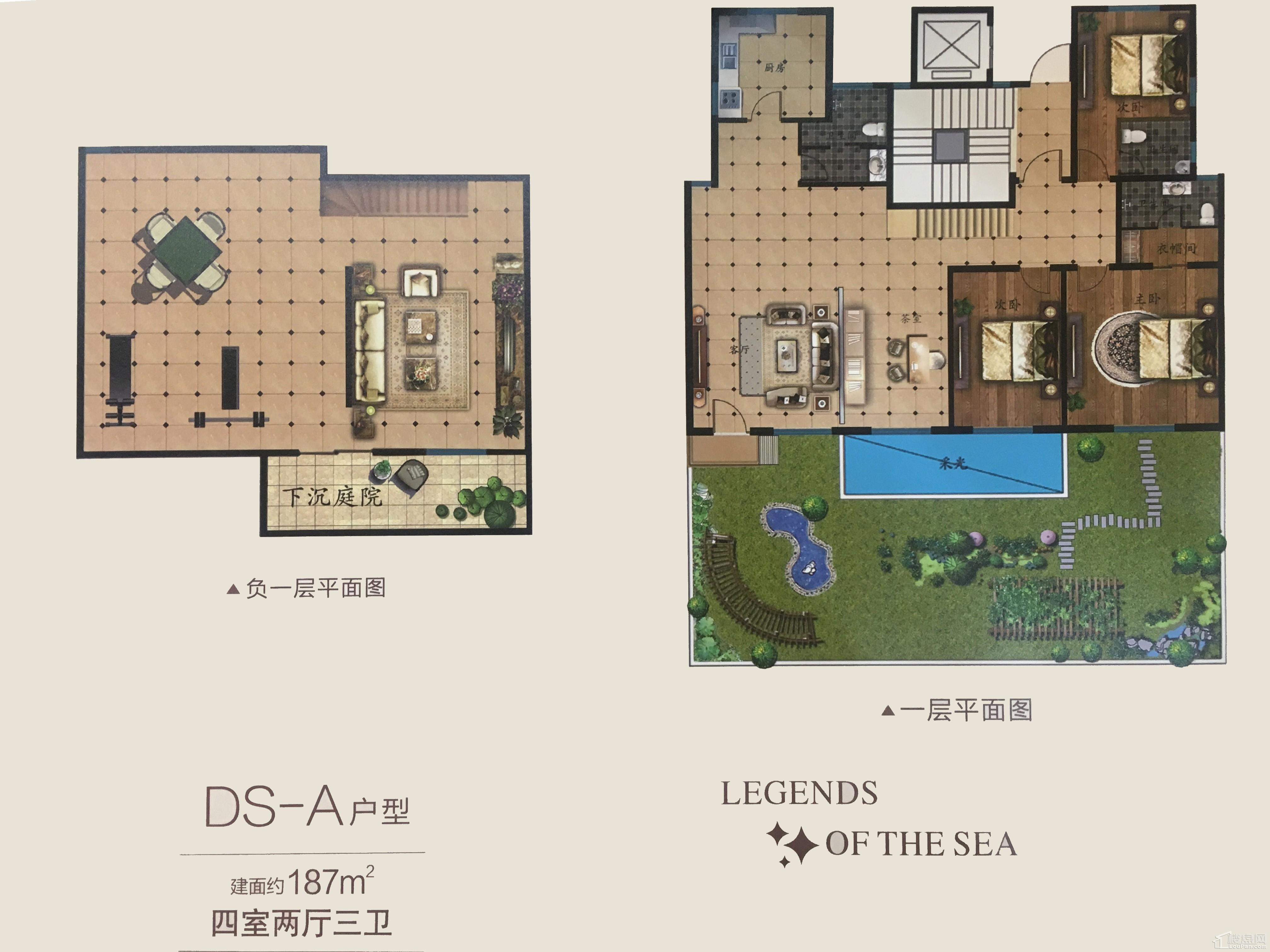 DS-A户型
