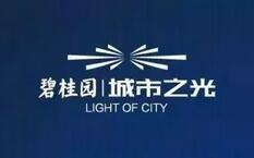 碧桂园城市之光