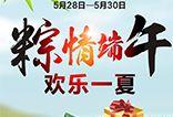 【五洲观澜】粽情端午,欢乐一夏