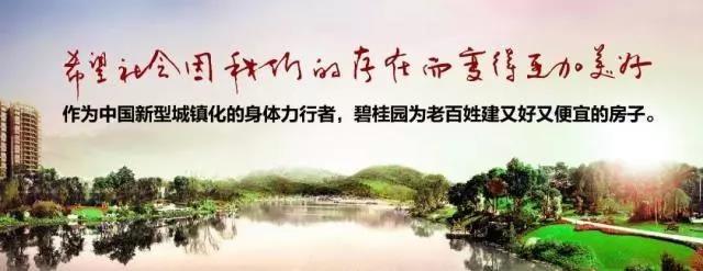 碧桂园凤凰城·豪园 致献湖境园林生活美学