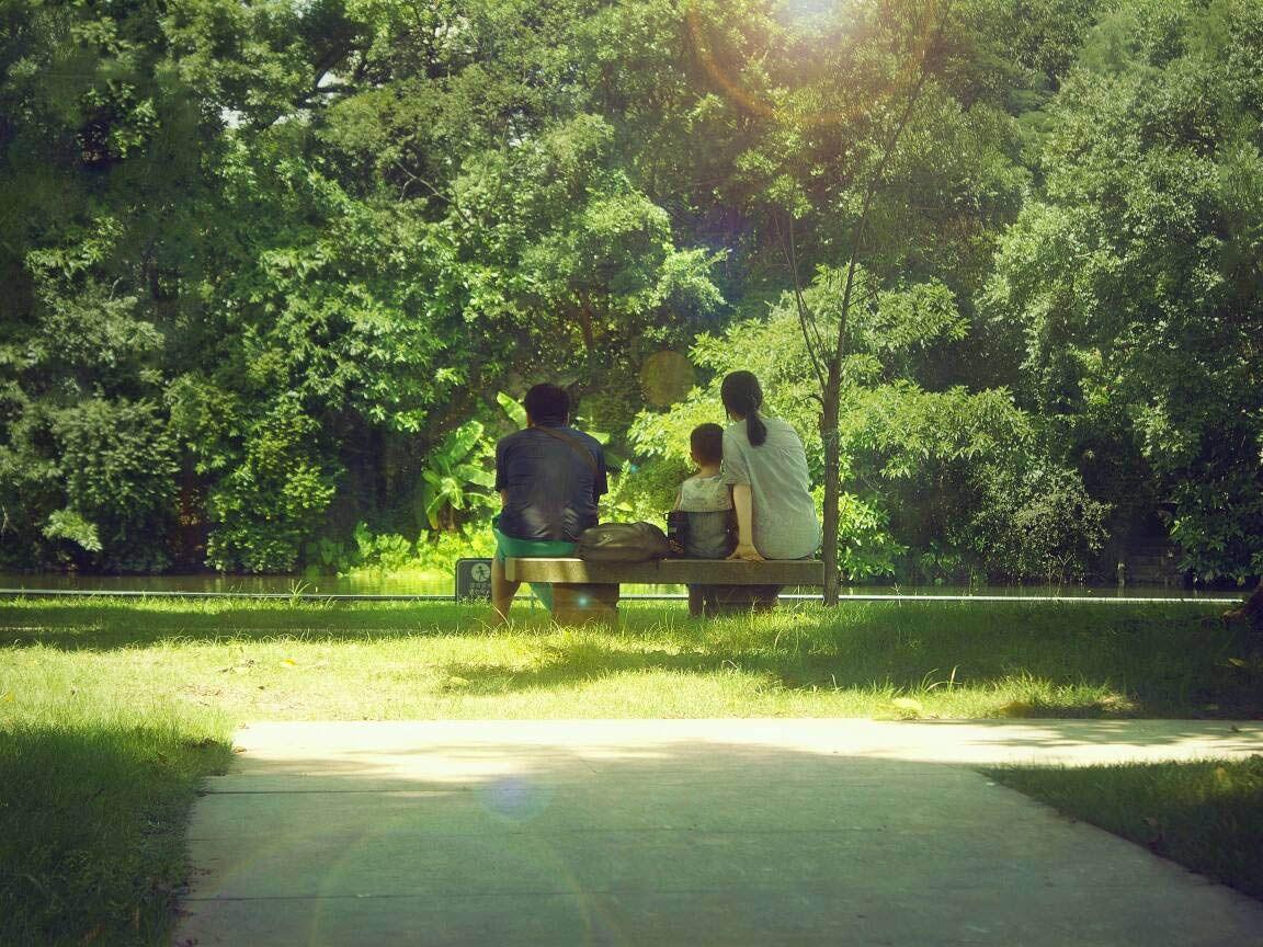 居住在公园中与繁华为邻,慢下来的嘉兴生活更