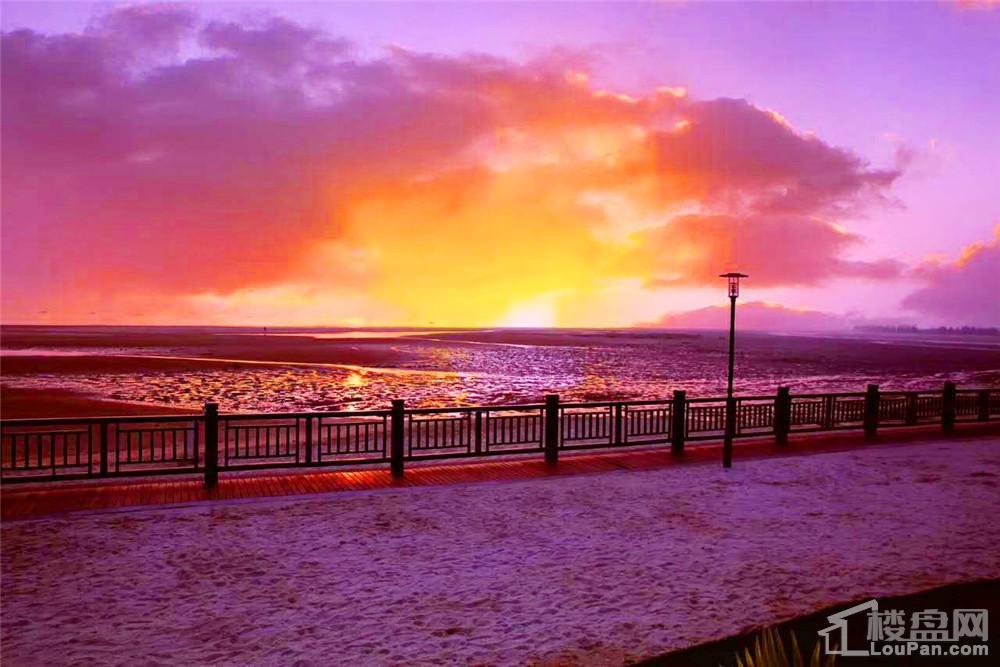 北海恒大海上帝景实景图