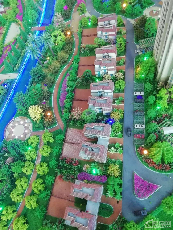 园辉·红树湾沙盘实景图
