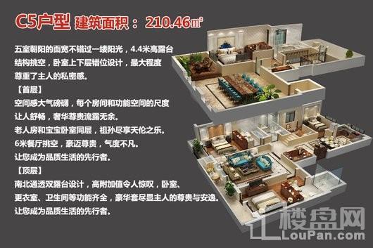 中央豪庭·柿园C5户型 4室2厅4卫1厨