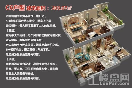 中央豪庭·柿园C6户型 4室2厅3卫1厨