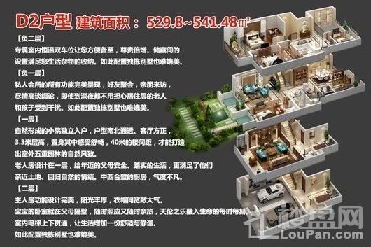 中央豪庭·柿园D2户型 4室4厅5卫1厨