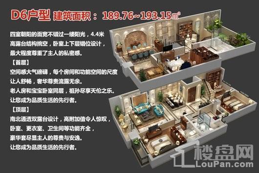 中央豪庭·柿园D6户型 4室2厅3卫1厨