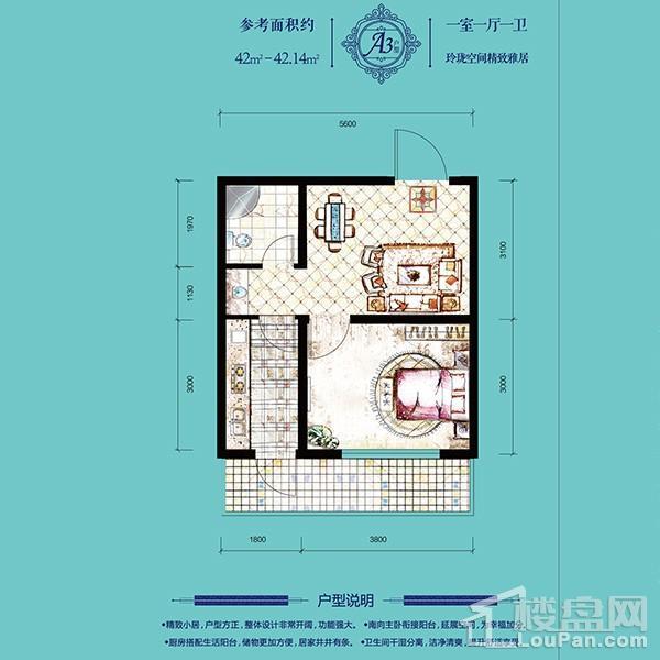 高层42平1室1厅1卫A3户型