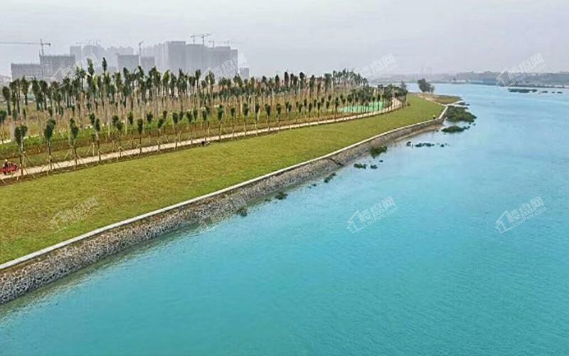 彰泰红树湾附近冯家江